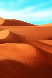 Sud, désert à perte de vue