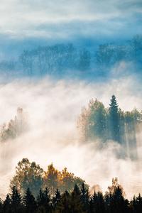 Alcheringa, la brume aux fantômes
