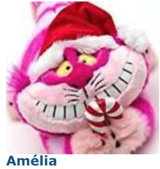 Concours d'avatars de Noël 2017 : LES VOTES Amylia10