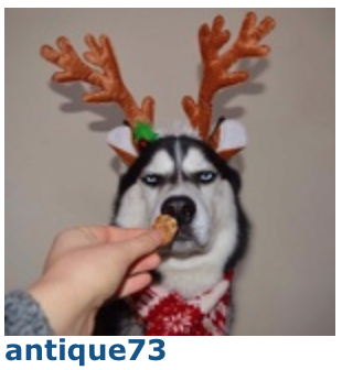 Concours d'avatars de Noël 2017 : LES VOTES Antiqu10