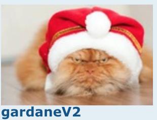 Concours d'avatars de Noël 2017 : LES VOTES Gardan10