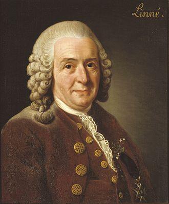 10 janvier 1778: Carl von Linné Carl_v10