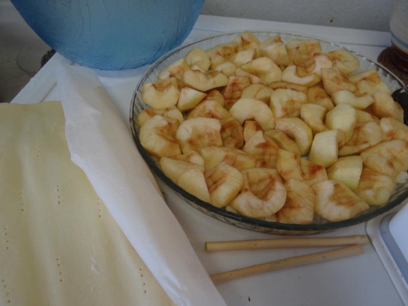 Tarte aux pommes Tatin Dsc08610