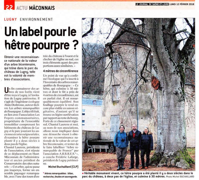 """Lugny : """"Un label pour le hêtre pourpre ?"""" (""""Le JSL"""" du lundi 12 février 2018). Lugny_20"""
