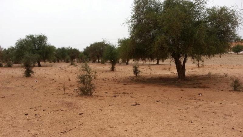 le Sahel zone de non-droit - Page 26 1722