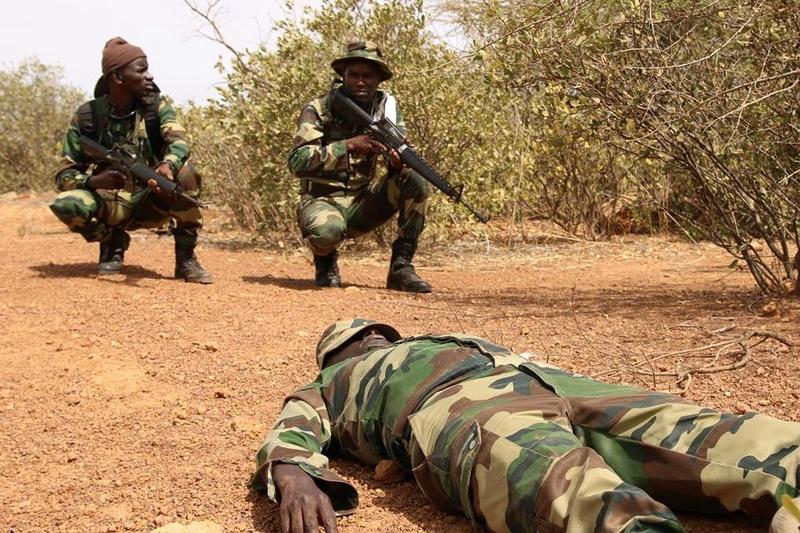 Armée Sénégalaise - Page 10 2023