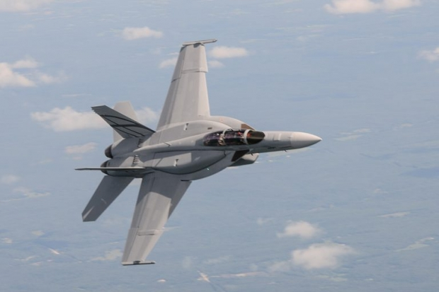 F/A 18 Hornet around the world - Page 4 2029
