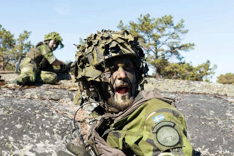 Swedish Armed Forces/Försvarsmakten - Page 13 2035
