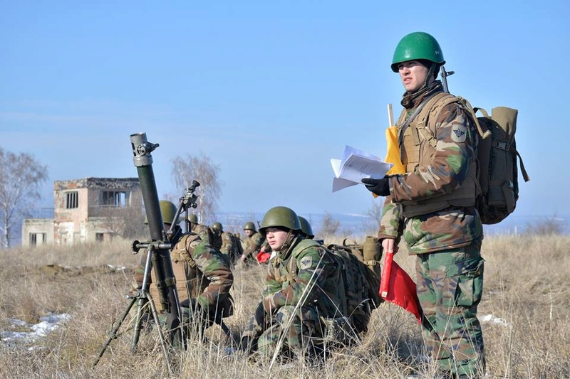 Forces armées moldaves - Page 2 20722
