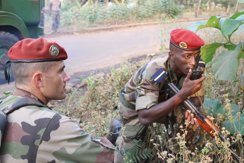 Les Forces de défense et de sécurité de Côte d'Ivoire - Page 5 21024