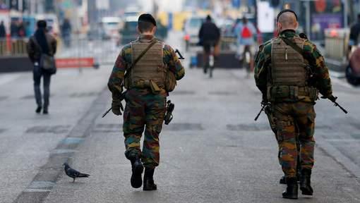 Armée Belge / Defensie van België / Belgian Army  - Page 14 21120