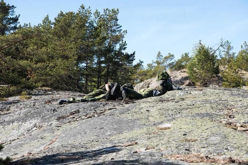 Swedish Armed Forces/Försvarsmakten - Page 13 2134