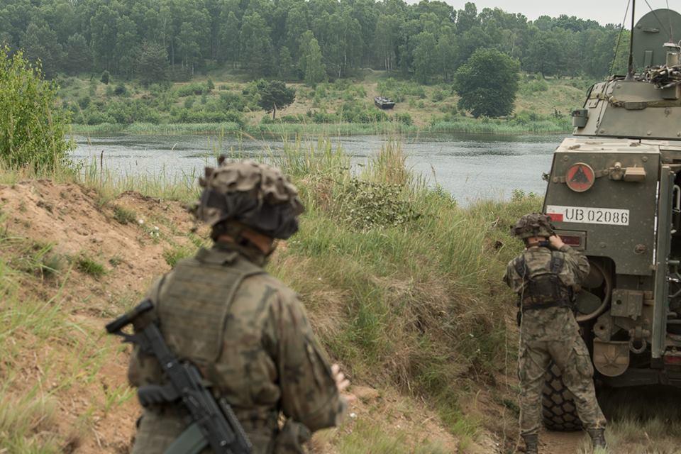 Les Forces Armées Polonaises/Polish Armed Forces - Page 24 2153