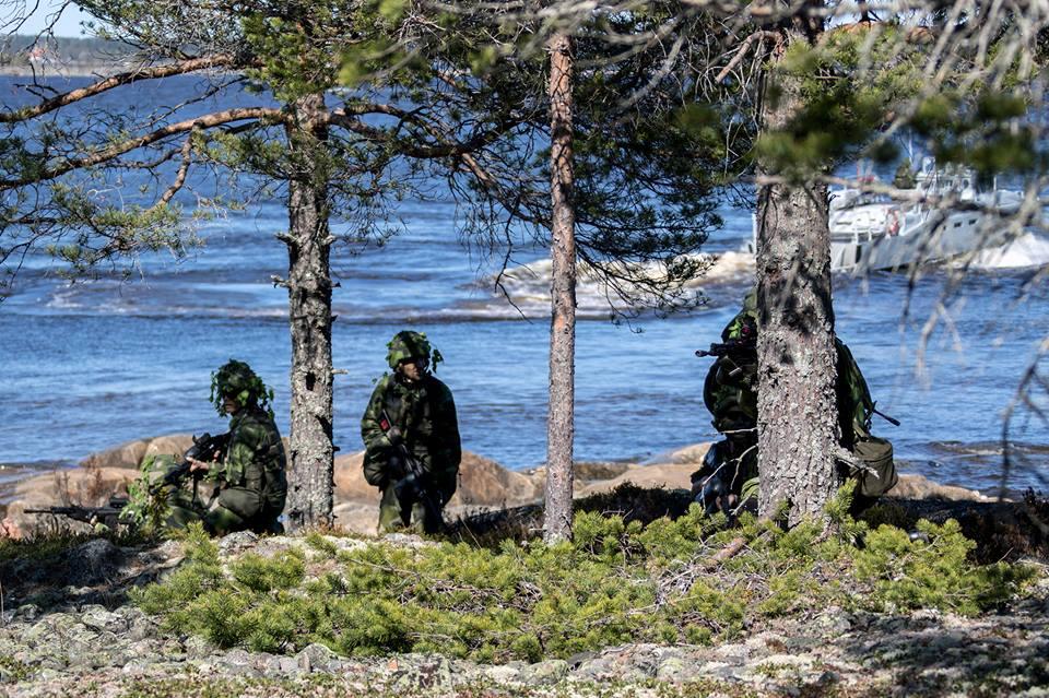 Swedish Armed Forces/Försvarsmakten - Page 13 2251