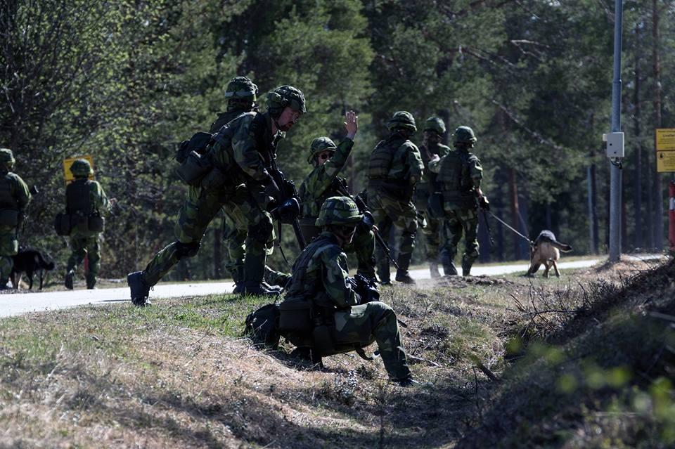 Swedish Armed Forces/Försvarsmakten - Page 13 2252