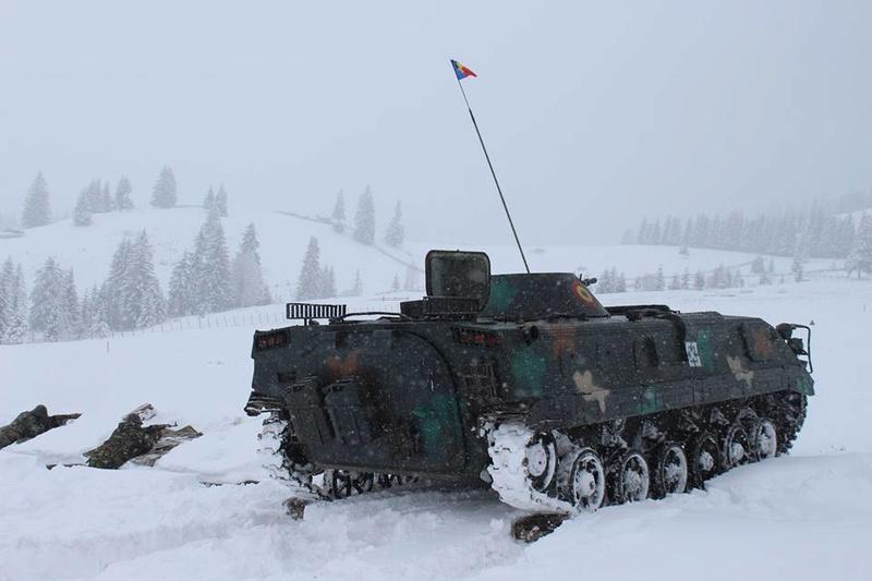 Armée Roumaine/Romanian Armed Forces/Forţele Armate Române - Page 11 22619