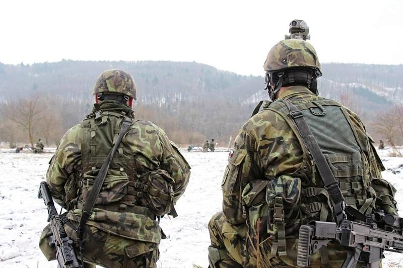 Armée tchèque/Czech Armed Forces - Page 10 22921