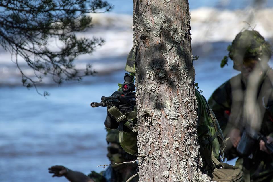 Swedish Armed Forces/Försvarsmakten - Page 13 2369