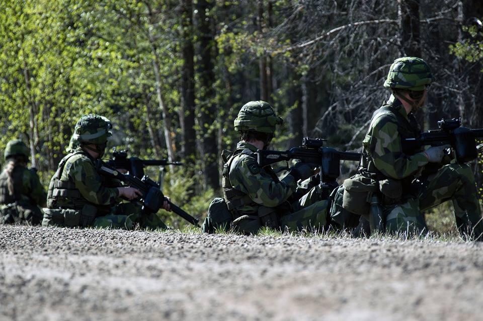 Swedish Armed Forces/Försvarsmakten - Page 13 2370
