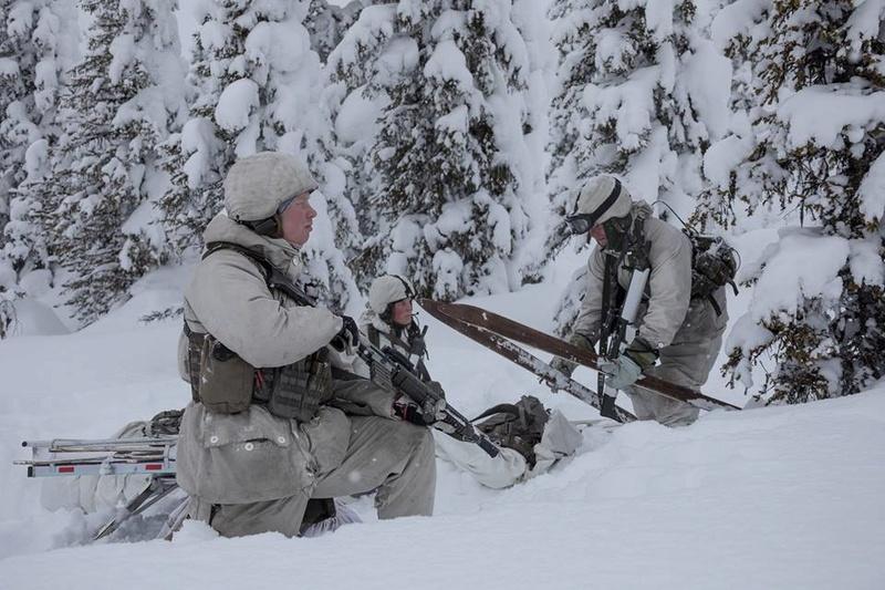 Swedish Armed Forces/Försvarsmakten - Page 13 24340