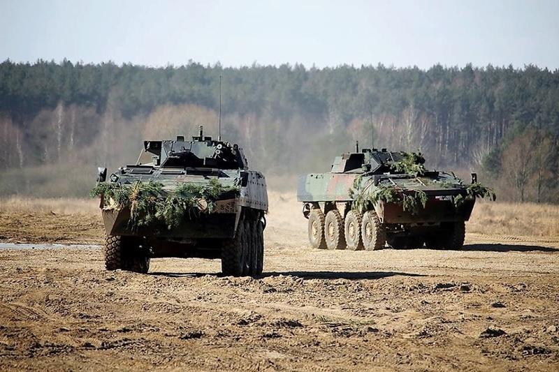Les Forces Armées Polonaises/Polish Armed Forces - Page 24 24349