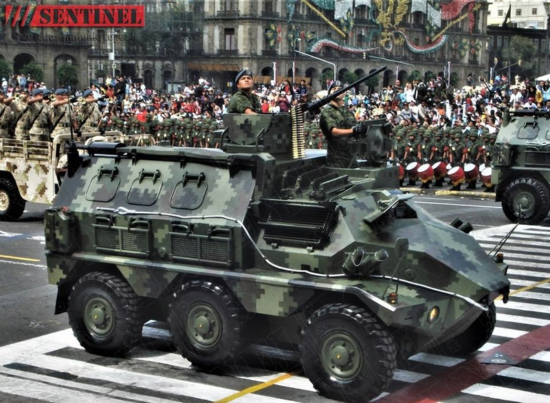 Armée Mexicaine / Mexican Armed Forces / Fuerzas Armadas de Mexico - Page 8 24363