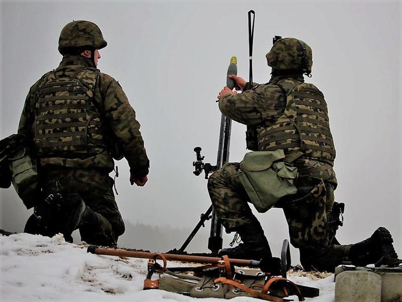 Les Forces Armées Polonaises/Polish Armed Forces - Page 23 24424