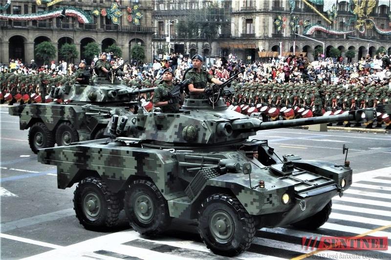 Armée Mexicaine / Mexican Armed Forces / Fuerzas Armadas de Mexico - Page 8 24464