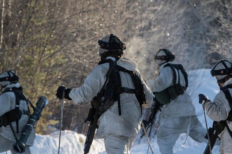 Swedish Armed Forces/Försvarsmakten - Page 13 24528