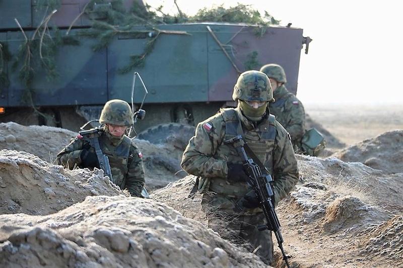 Les Forces Armées Polonaises/Polish Armed Forces - Page 24 24537