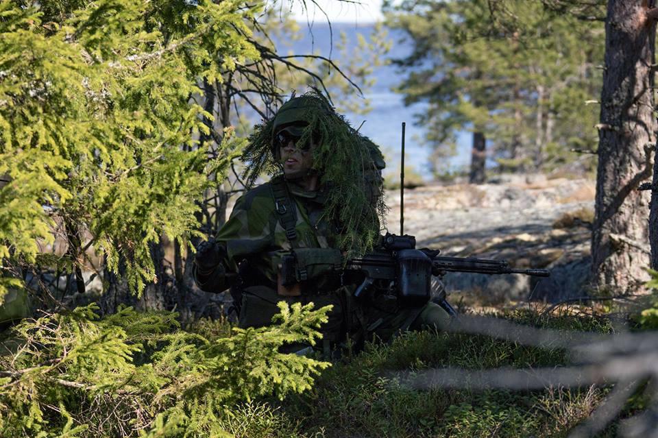 Swedish Armed Forces/Försvarsmakten - Page 13 2462