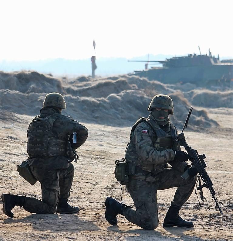 Les Forces Armées Polonaises/Polish Armed Forces - Page 24 24636