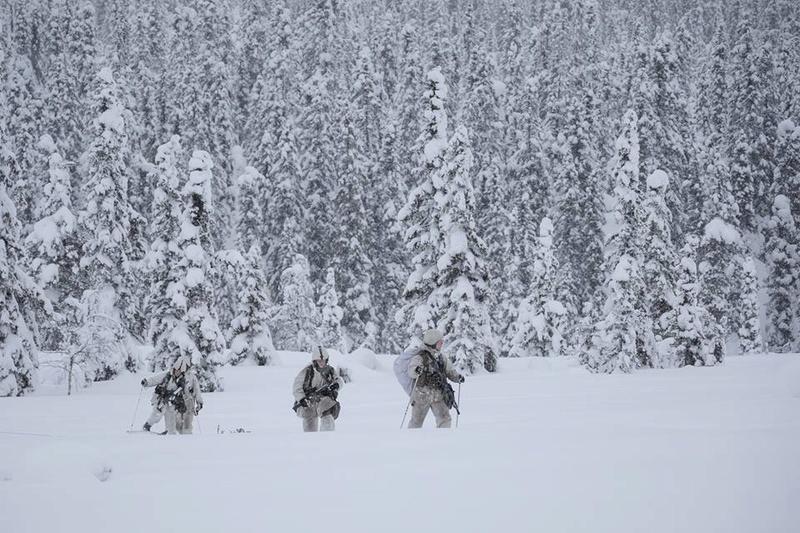 Swedish Armed Forces/Försvarsmakten - Page 13 24917