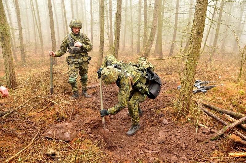 Armée tchèque/Czech Armed Forces - Page 10 25021