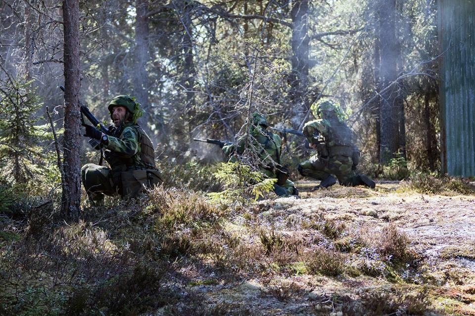 Swedish Armed Forces/Försvarsmakten - Page 13 2557