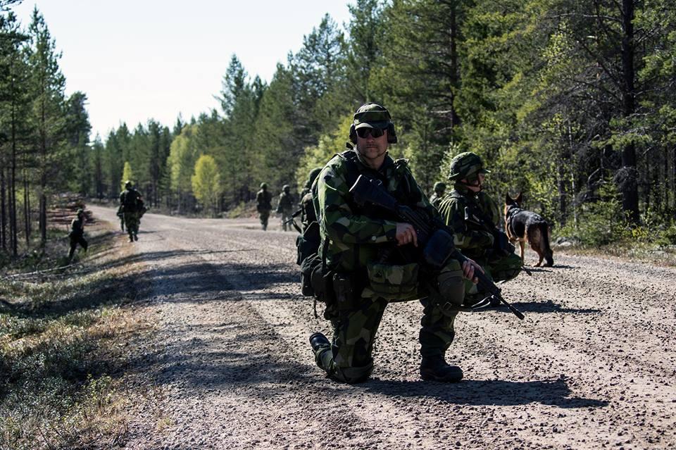Swedish Armed Forces/Försvarsmakten - Page 13 2558