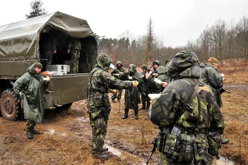 Armée tchèque/Czech Armed Forces - Page 10 25612