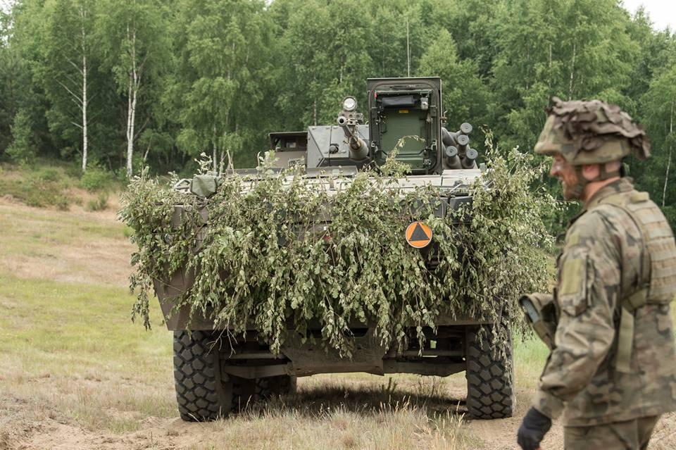 Les Forces Armées Polonaises/Polish Armed Forces - Page 24 2568