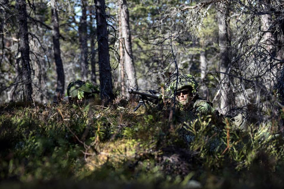 Swedish Armed Forces/Försvarsmakten - Page 13 2694