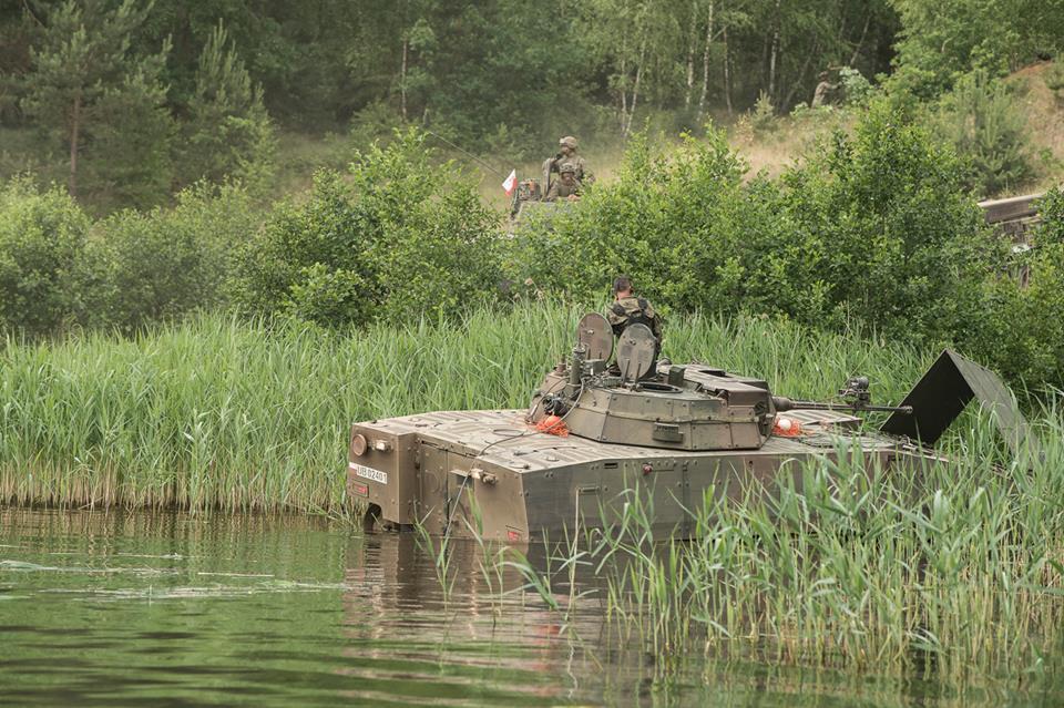 Les Forces Armées Polonaises/Polish Armed Forces - Page 24 28126