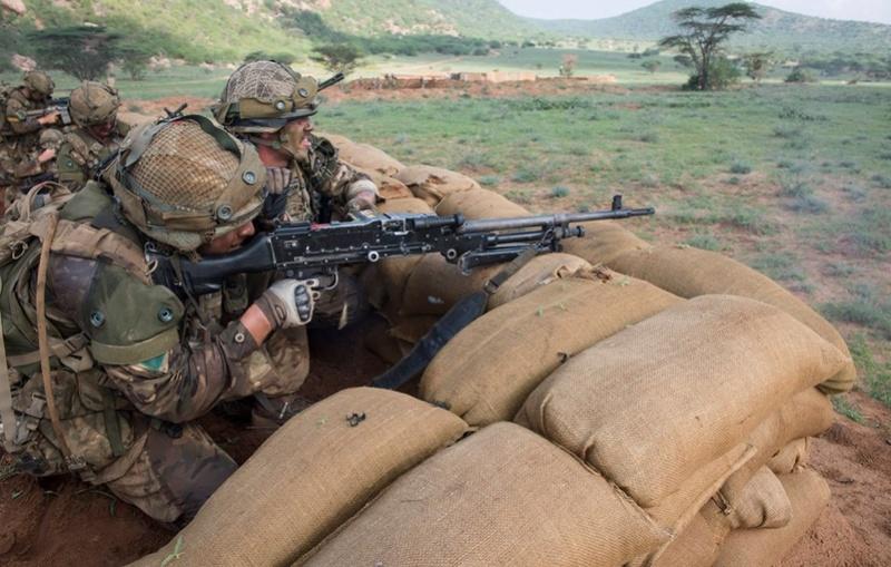 Armée Britannique/British Armed Forces - Page 8 29129
