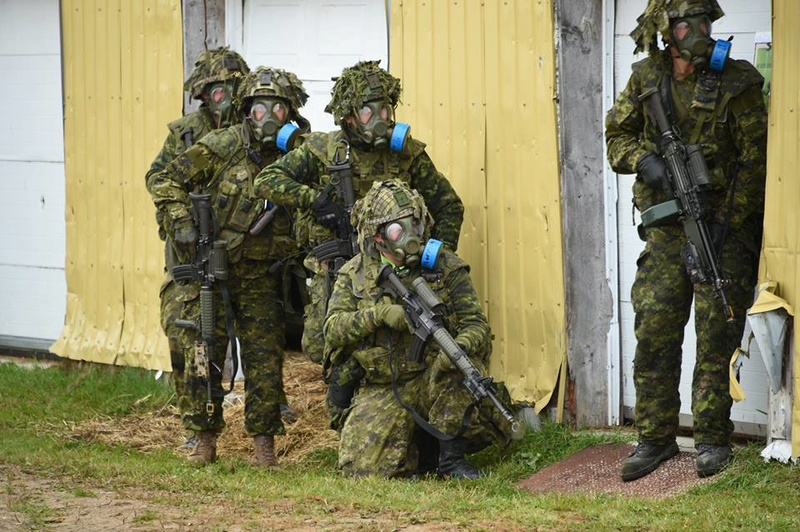 Armée canadienne/Canadian Armed Forces - Page 27 2933