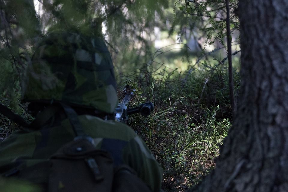 Swedish Armed Forces/Försvarsmakten - Page 13 30120