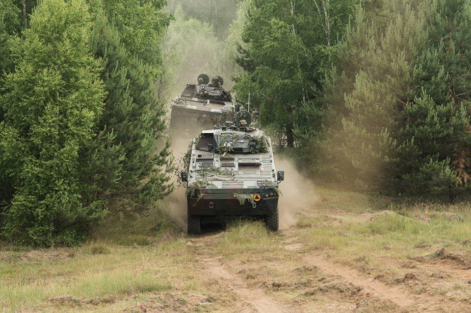 Les Forces Armées Polonaises/Polish Armed Forces - Page 24 30124
