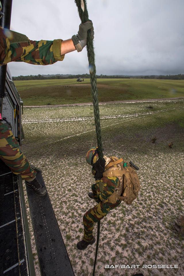 Armée Belge / Defensie van België / Belgian Army  - Page 13 3511