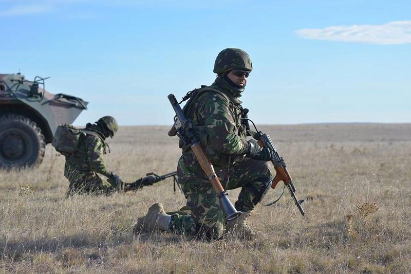Armée Roumaine/Romanian Armed Forces/Forţele Armate Române - Page 10 3924