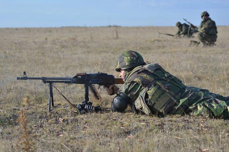 Armée Roumaine/Romanian Armed Forces/Forţele Armate Române - Page 10 4023