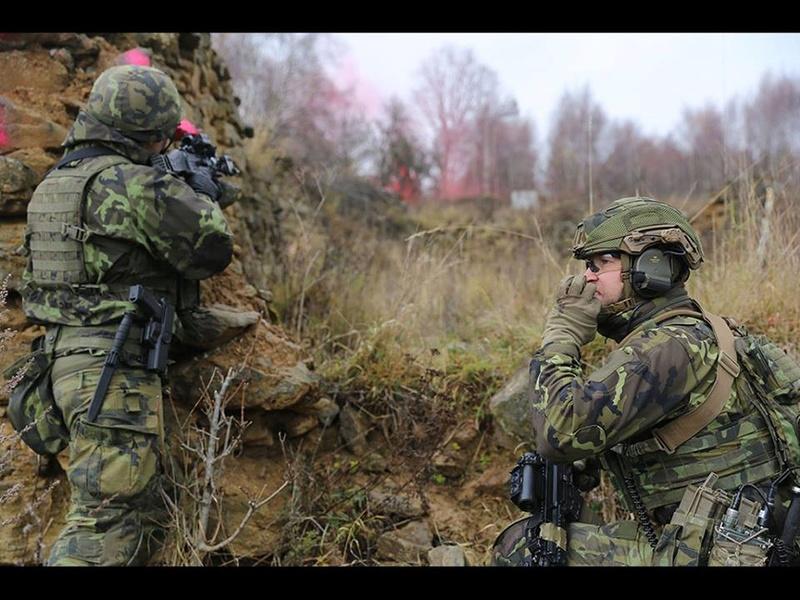 Armée tchèque/Czech Armed Forces - Page 10 4135