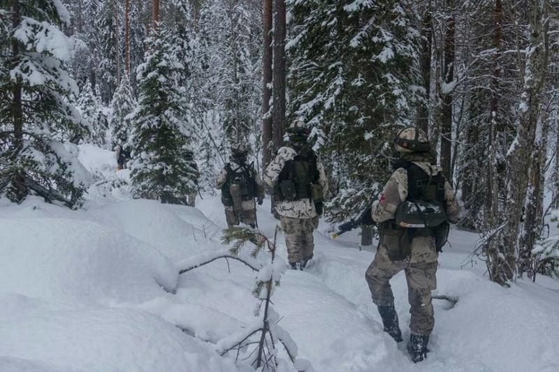 Armée Finlandaise / Finnish Defence Forces / puolustusvoimat - Page 8 4150