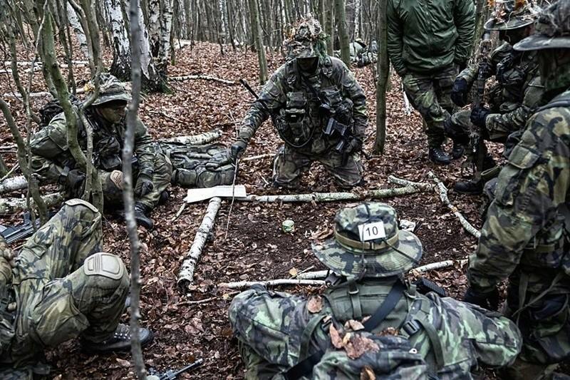 Armée tchèque/Czech Armed Forces - Page 10 4915